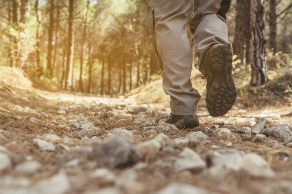 Hiking Trials In Colorado