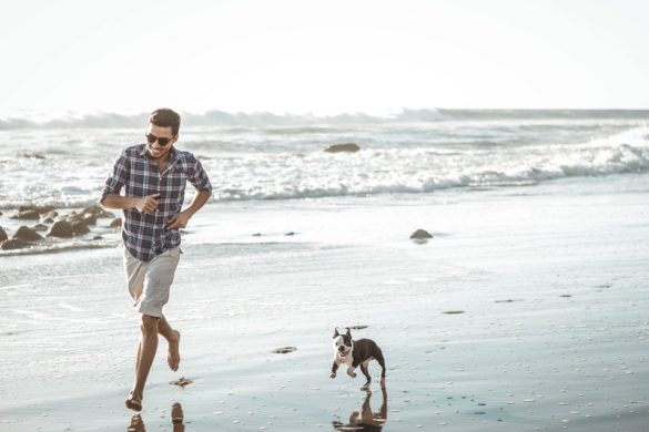 Pet-Friendly Vacation Spots